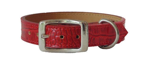 Croc Imprint Straight Collar Red