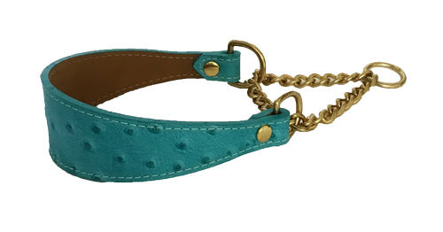 Ostrich Martingale Turquoise