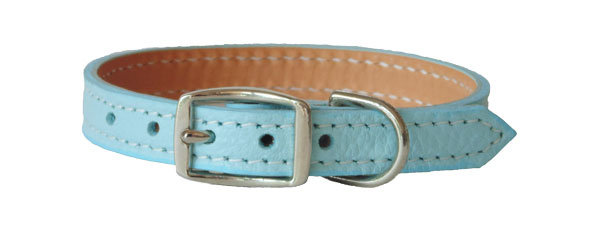 Luscious Straight Collar Turquoise