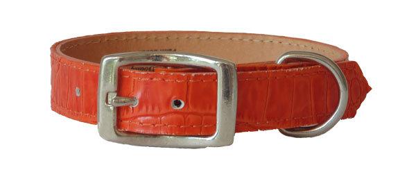 Croc Imprint Straight Collar Orange