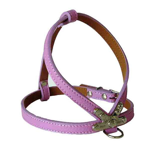 Pebble K Harness Orchid