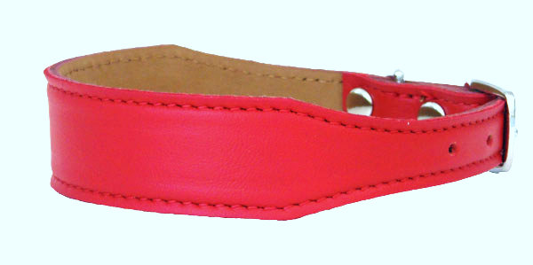 Luscious Tapered  Collar Red Berry