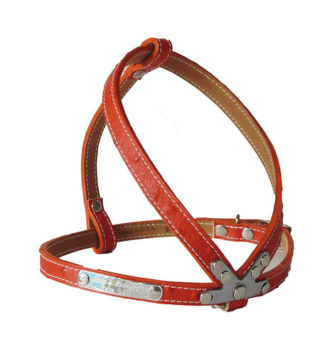 Ostrich Harness Orange