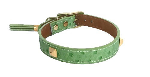 Ostrich Straight Collar Lime