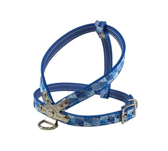 Escher Harness blue