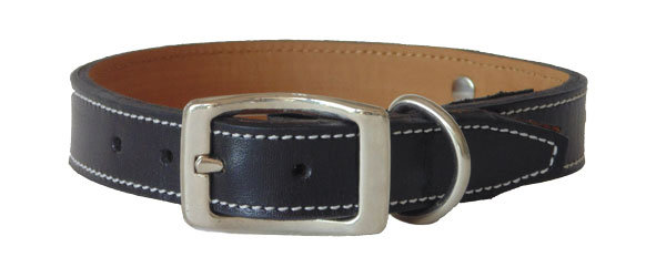 Monte Carlo Straight Collar Black