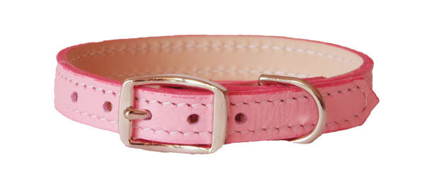 Luscious Straight Collar Pink