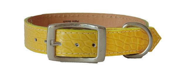 Croc Imprint Straight Collar Yellow