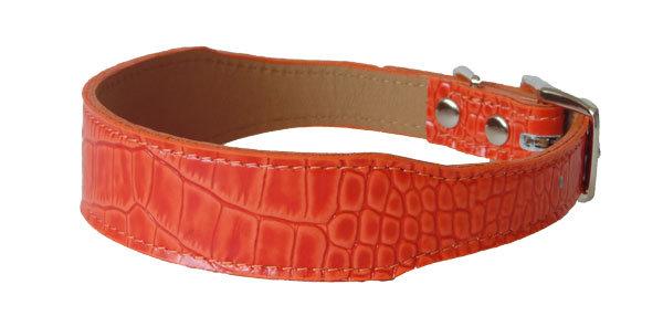 Croc Imprint Tapered Collar Orange