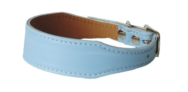 Luscious Tapered  Collar Powder Blue