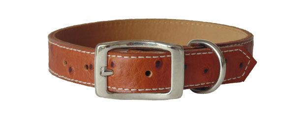 Ostrich Collar Brown
