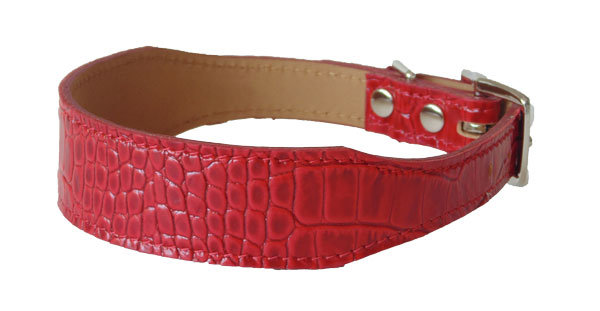 Croc Imprint Tapered Collar Red