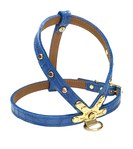 Croc  Harness Blue with Gold spots