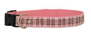 Raspberry Leash