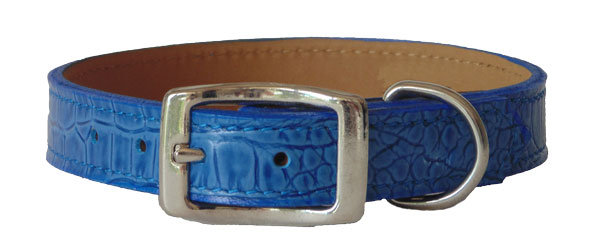 Croc Imprint Straight Collar Blue
