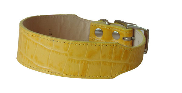 Croc Imprint Tapered Collar Yellow