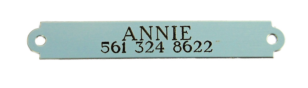 """Name Plate """"Shiny Silver"""""""