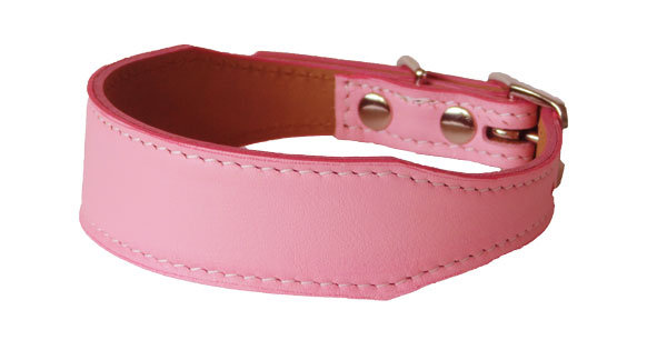Luscious Tapered  Collar Pink