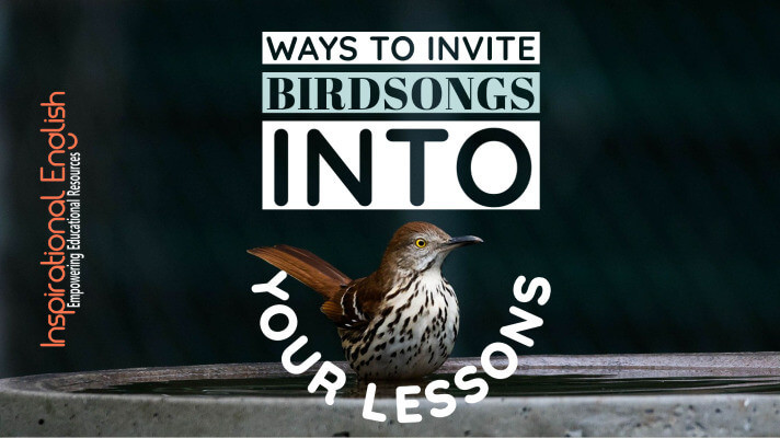 Ways to invite birdsongs into your lessons