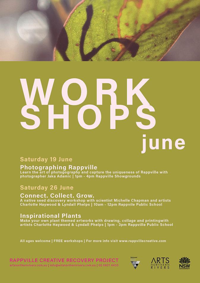 Workshop Flier_June_FINAL 2.jpg