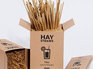 HayStraws-014-e1563769965298.jpg