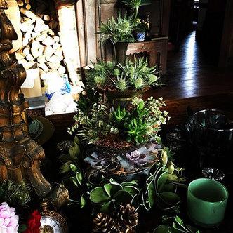 Succulent tower arrangement
