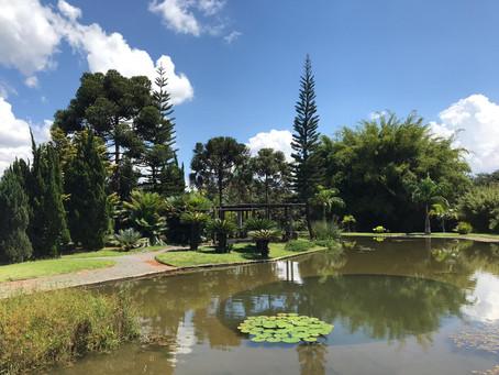 Conheça o Espaço Virtual do Jardim Botânico de Brasília