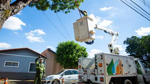 Serviço de poda de árvores deixará Planaltina e Brazlândia sem energia temporariamente nesta quarta
