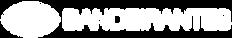 LOGO-BANDEIRANTES-2K_edited.png