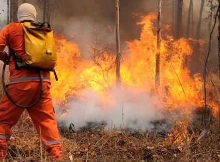 GDF destinará 3 milhões de reais para contratação temporária de brigadistas florestais