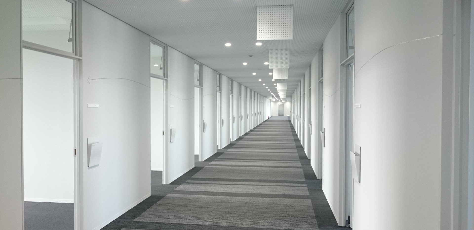 M大学3.jpg