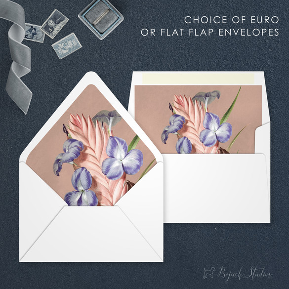 Vanessa F008_envelope flaps copy.jpg