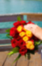 Engagement 14.jpg