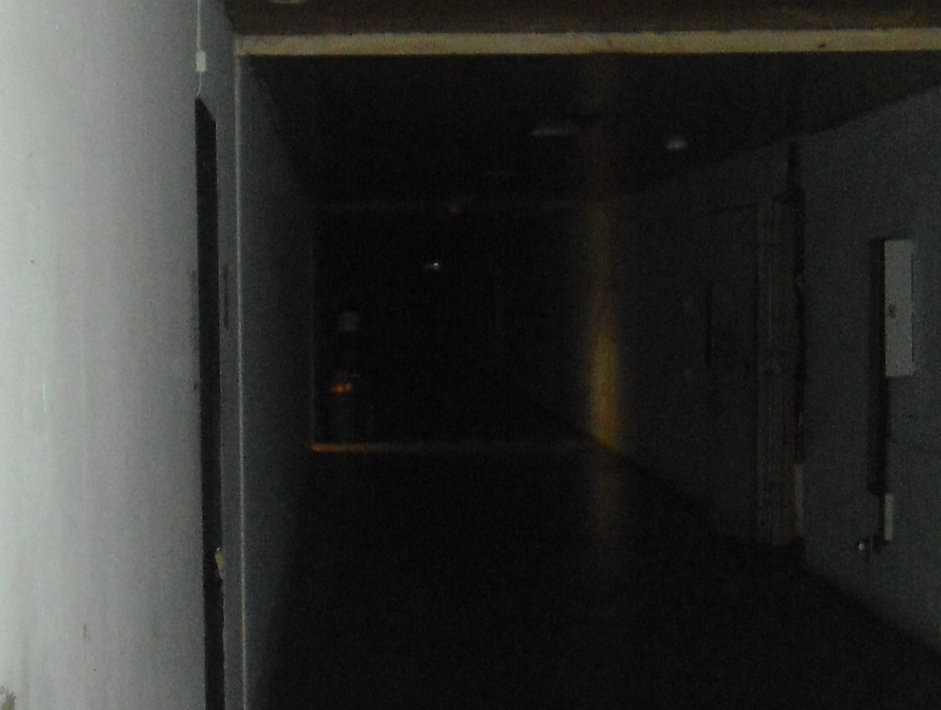 DSC07851a.jpg