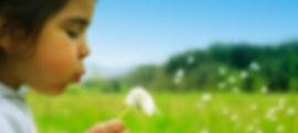 allergy-dandelion.jpg