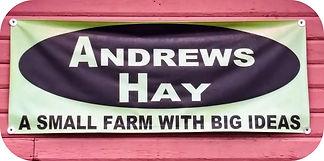 Andrews1sm.jpg