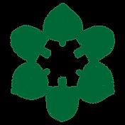 Logo Strasser Öckler
