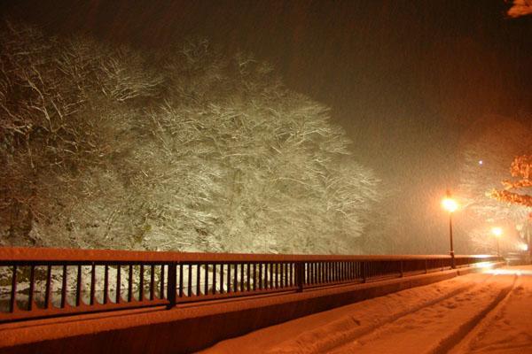 雪の日のライトアップ