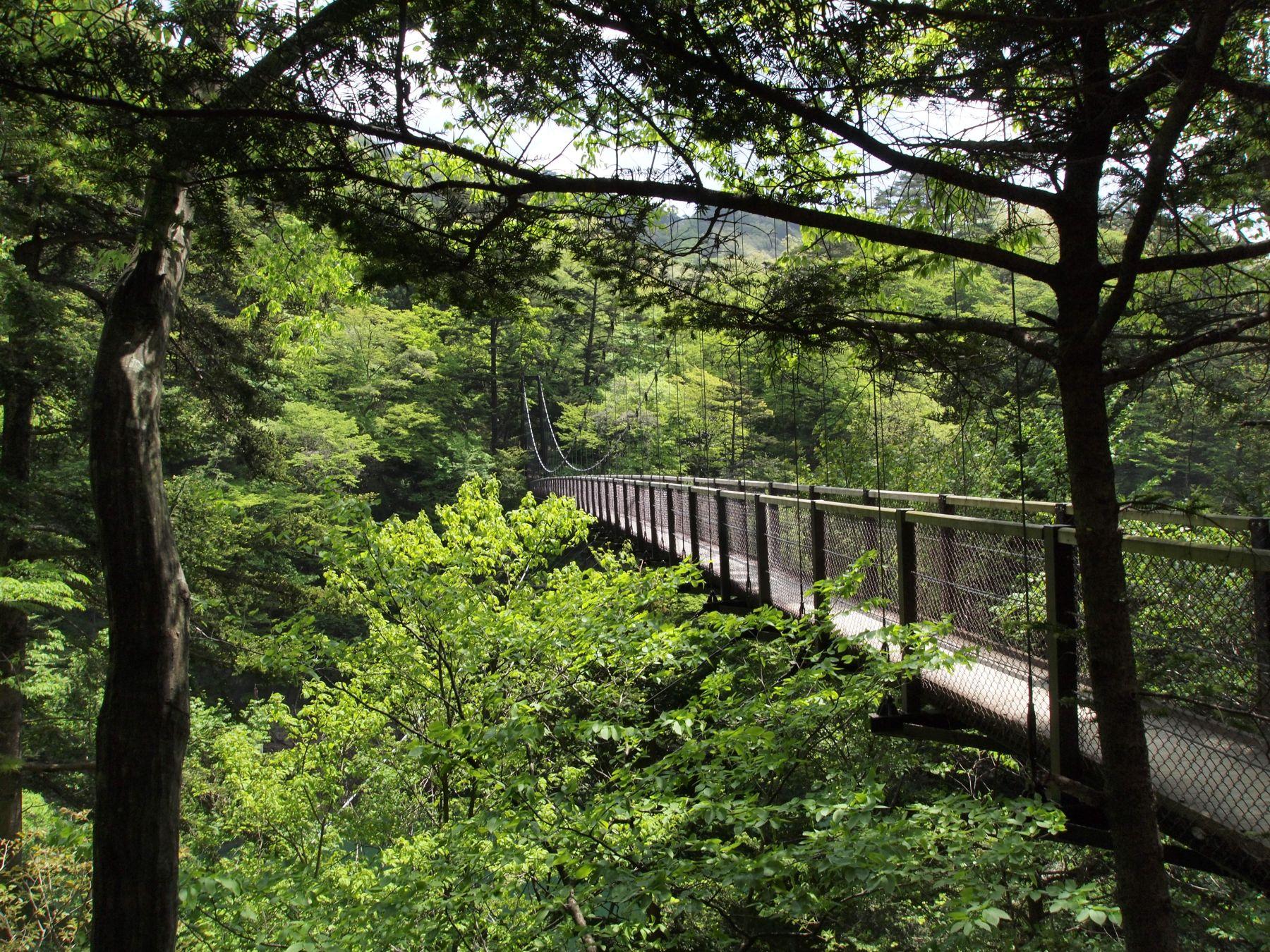 回顧(みかえり)の吊り橋