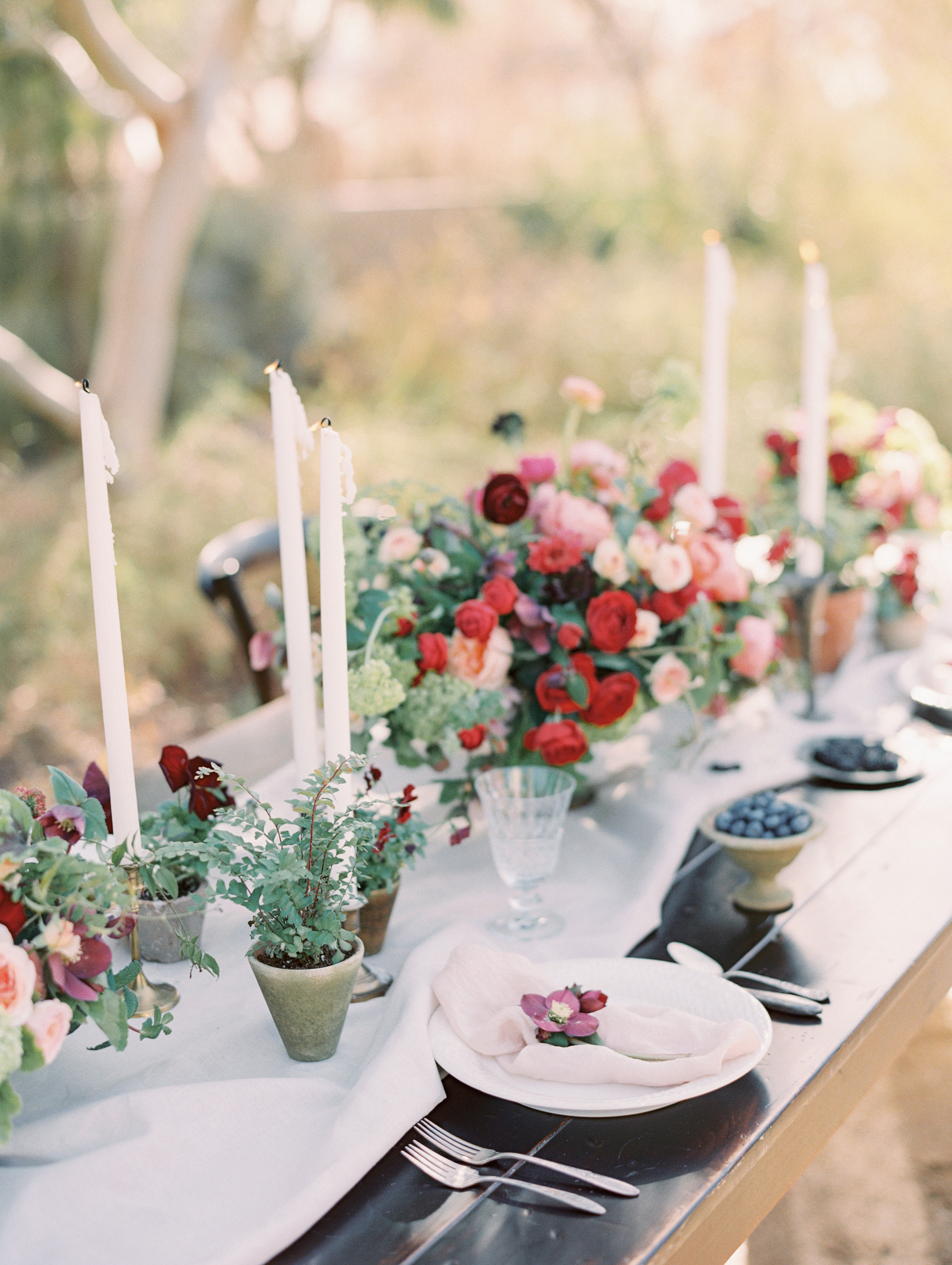 Garden-inspired wedding reception with lush floral centerpieces and potted herb and blooming plants. Photo: Gaby Jeter