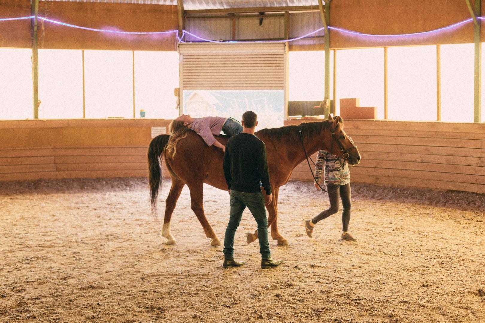 Лошади-7388.jpg
