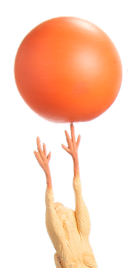 Chicken with ball SMALL.png