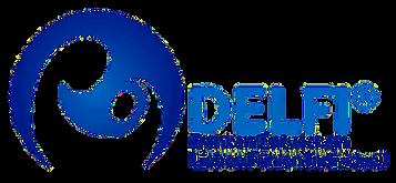 DelfiLogoFertig - Kopie.png