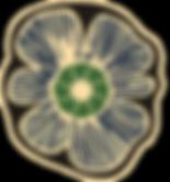 dnusageneral_edited.png