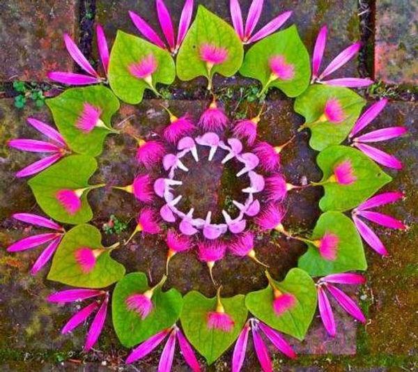 mandalas_naturaleza3-1-500x445.jpg