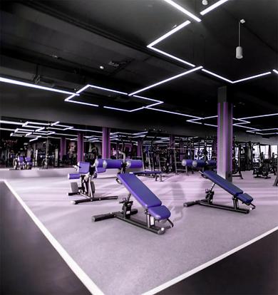 Salle de musculation BPJEPS AF - Cotenti
