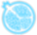 noun_Pomegranate_209200_66D6FF.png