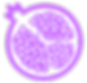 noun_Pomegranate_209200_C868FF.png