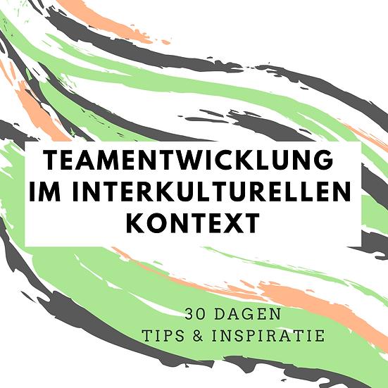 Teamentwicklung im interkulturellen kontext