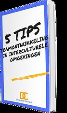 5Tips_teamontwikkeling_3D.png